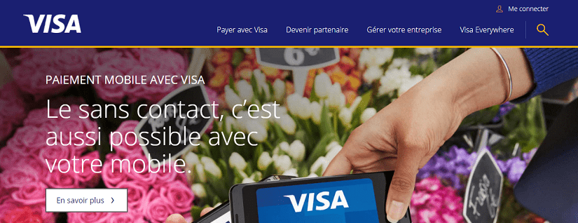 capture écran du site VISA