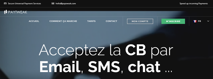 capture ecran du site Paytweak